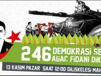 246 Demokrasi Şehidine 246 Ağaç Fidanı