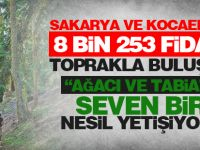 Sakarya Ve Kocaeli'de 8 Bin 253 Fidan Toprakla Buluştu...