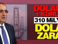Doların 1 kuruşu 310 milyon dolar zarar!