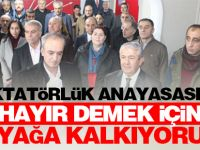 'Diktatörlük Anayasasına Hayır demek için ayağa kalkıyoruz'