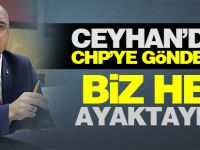 Ceyhan'dan CHP'ye gönderme: Biz hep ayaktaydık