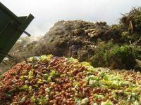 """""""Türkiye'nin israf ettiği gıdayla Suriye doyar"""""""