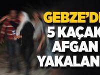 Gebze'de 5 kaçak Afgan yakalandı