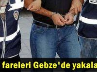 Oto fareleri Gebze'de yakalandı