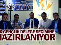 AK Gençlik delege seçimine hazırlanıyor