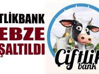 Çiftlikbank Gebze boşaltıldı