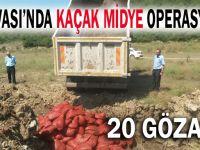 Kaçak midyecilere operasyon; 20 gözaltı