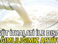 'Süt ithalatı ile dışa bağımlılığımız artıyor'