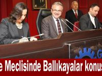 Gebze Meclisinde Ballıkayalar konuşuldu!