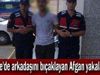 Gebze'de arkadaşını bıçaklayan Afgan yakalandı