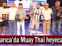 Darıca'da Muay Thai heyecanı
