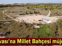 Şayir; Yükselen şehir Dilovası'na yakışacak!