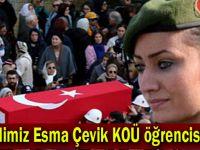 Şehidimiz Esma Çevik KOÜ öğrencisiymiş