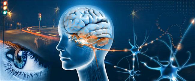 201508101427_eye-brain-photo-neuropsych-workshop1.png